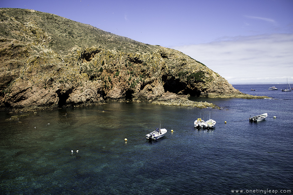 One Tiny Leap Travel & Lifestyle Blog • Berlenga Island