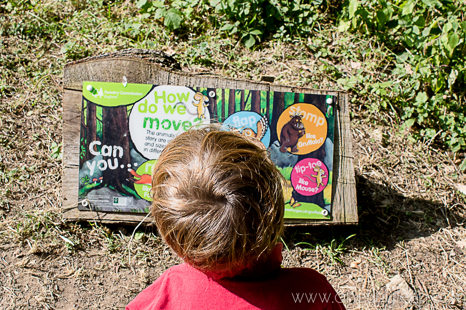 gruffalo trail - fine shade forest via @onetinyleap