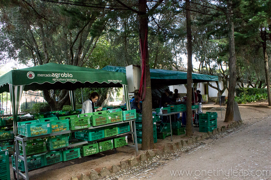 Mercado Organico Biologico Marechal Carmona Park Cascais