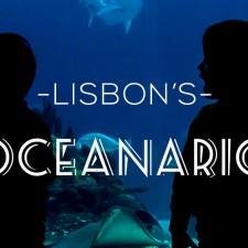 Oceanario Lisboa via onetinyleap all rights reserved
