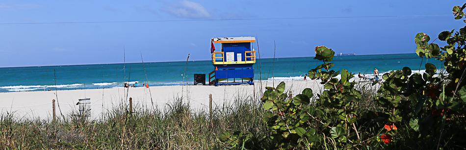 miami beach via onetinyleap