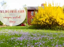 WILDFLOWER FARM MASSACHUSSETS
