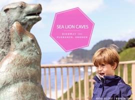 VISIT SEA LION CAVES OREGON