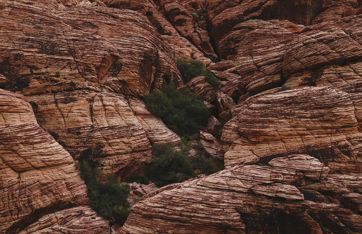 Red_Rock_Canyon8