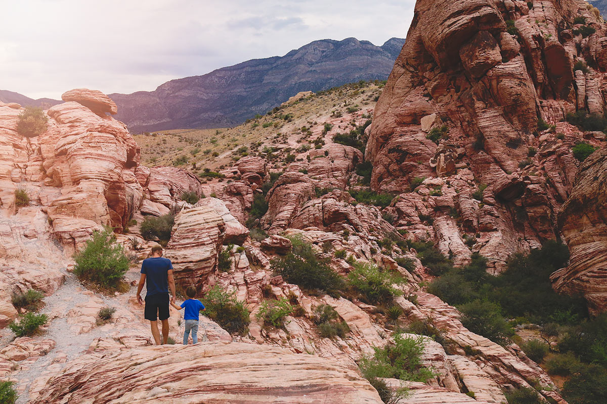 Red_Rock_Canyon9