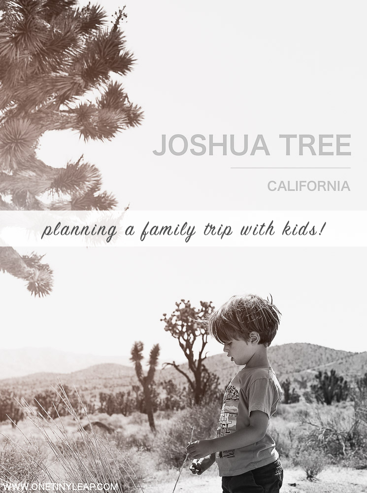 Joshua Tree with Kids